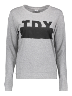 Jacqueline de Yong Sweater JDYMILLY L/S PRINT SWEAT SWT RPT 15133660 Light Grey Mela/JDY
