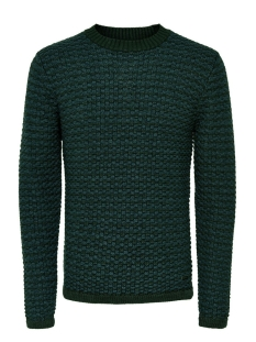 Only & Sons Trui onsDOC CREW NECK KNIT NOOS 22004485 Darkest Spruce