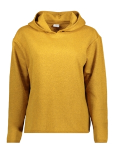 Jacqueline de Yong Sweater JDYLOLA L/S HOOD SWEAT SWT 15138577 Golden Brown