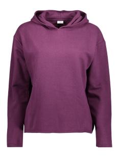 Jacqueline de Yong Sweater JDYLOLA L/S HOOD SWEAT SWT 15138577 Potent Purple