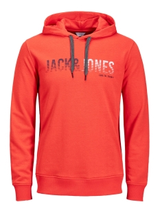 Jack & Jones Sweater JCOLINN SWEAT HOOD NOOS 12131551 Poinciana