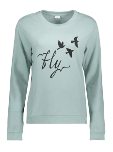 Jacqueline de Yong Sweater JDYNEWTON L/S PRINT SWEAT 02 SWT 15143170 Gray Mist/FLY