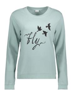 Jacqueline de Yong Sweater JDYNEWTON L/S PRINT SWEAT 02 SWT 15143170 Gray Mist/FLY