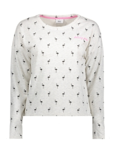 Only Sweater onlLEXI L/S O-NECK BOX SWT 15156786 Oatmeal/FLAMINGO