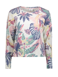 Only Sweater onlLEXI L/S O-NECK BOX SWT 15156786 Oameal/TROPICAL