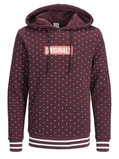 Jack & Jones Sweater JORCOLK SWEAT HOOD 12148330 Port Royale