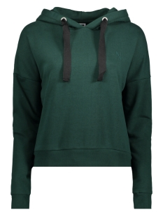 Noisy may Trui NMJORDAN L/S LOGO HOOD SWEAT 27003246 Pine Grove/Logo