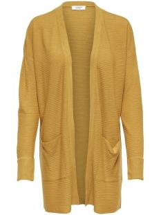 Jacqueline de Yong Vest JDYMATHISON FOLD UP CARDIGAN KNT 15155108 Golden Spice