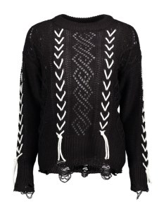 Vero Moda Trui VMANETA LACES LS O NECK BLOUSE  10204542 Black/W.SNOW WH