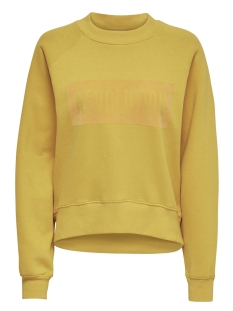 Only Sweater onlLOTTA L/S O-NECK BF SWT 15166488 Golden Yellow