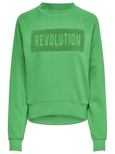 Only Sweater onlLOTTA L/S O-NECK BF SWT 15166488 Bright Green