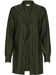 Jacqueline de Yong Vest JDYSOMILA L/S CARDIGAN SWT 15163755 Duffel Bag