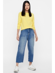 vmhappy ls new raglan o-neck blouse 10210525 vero moda trui yarrow