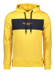 Jack & Jones sweater JORSTAVE SWEAT HOOD 12163141 Yolk Yellow