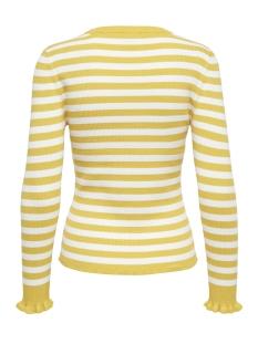 onlftilla l/s pullover knt 15174281 only trui solar power/cloud danc