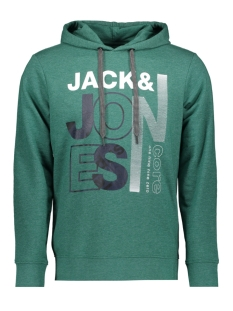 Jack & Jones sweater JCOTILLY SWEAT HOOD 12148661 Evergreen