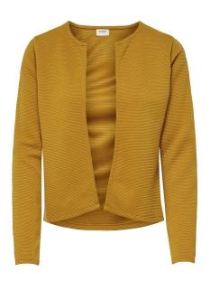 Jacqueline de Yong Vest JDYSAGA L/S SHORT CARDIGAN NOOS JRS 15180616 Harvest Gold