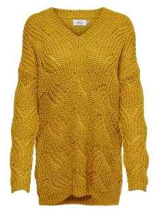 Only Trui ONLHAVANA L/S V-NECK PULLOVER CC KN 15181406 Golden Yellow