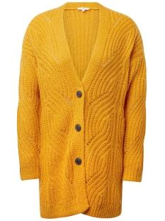 Tom Tailor Vest GEBREID JACK MET KABELPATROON 1013944 13463