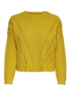 Only Trui ONLSARA L/S SHORTCABLE  PULLOVER CC 15192336 Solar Power