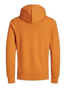 jprblahardy sweat hood pre sts 12166526 jack & jones sweater hawaiian sunset/slim fit