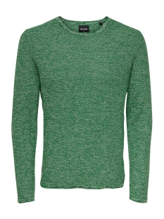 Only & Sons Trui onsWICTOR 12  STRUCTURE CREW NECK N 22012290 Posy Green