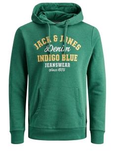 Jack & Jones sweater JJELOGO SWEAT HOOD 2 COL 19/20 NOOS 12157324 Verdant Green/REG. MELA