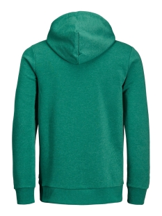 jjelogo sweat hood 2 col 19/20 noos 12157324 jack & jones sweater verdant green/reg. mela