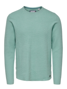 onsnicklas structured crew neck kni 22015522 only & sons trui aquifer