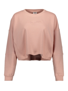 nmpumba l/s sweat unbrushed bg 27012893 noisy may sweater silver pink