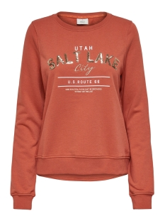 Only sweater ONLAMINA LIFE L/S BOX SWT 15203225 Hot Sauce/SALT