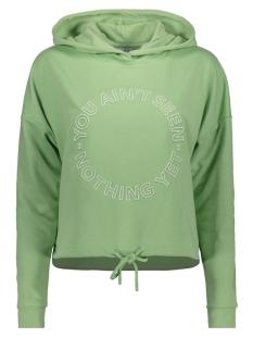 Only sweater ONLOBI L/S HOOD JRS 15205144 Hemlock/SEEN NOTHING