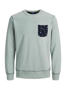 Jack & Jones sweater JORPEDRO SWEAT CREW NECK 12171676 GREEN MILIEU