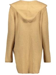 vest met capuchon 1012552xx71 tom tailor vest 18804