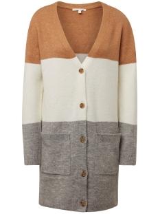 Tom Tailor Vest VEST 1012551XX71 18919