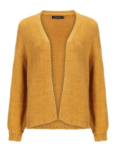 Ydence Vest RILEY CARDIGAN MET LUREX SSK2003 YELLOW