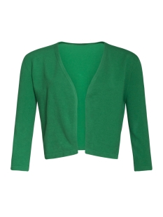 Smashed Lemon Bolero CARDIGAN 90001 GREEN