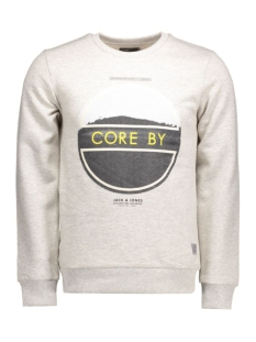 jjcobrag sweat crew neck 12106722 jack & jones sweater treated white