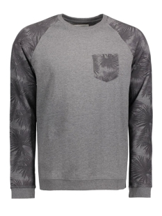 EDC Sweater 116CC2J008 C001