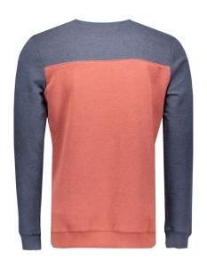 2530436.00.12 tom tailor sweater 6576