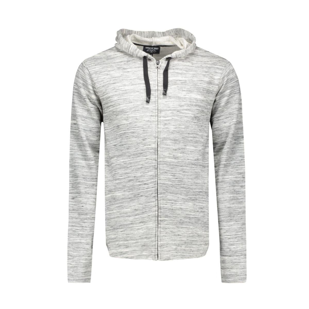 hw16.13.3691 jordan hoodie circle of trust vest grey shade