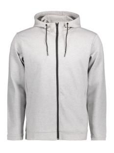 Only & Sons Vest onsHOLDEN ZIP HOOD 22004216 Light grey melange