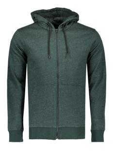 Only & Sons Vest onsFISKE ZIP HOODIE NOOS 22004472 Green Gables