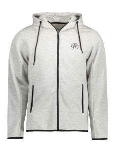 JCONICK SWEAT ZIP HOOD 12115730 Light grey melange
