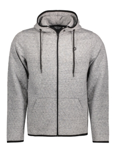Jack & Jones Vest JCOCARBON SWEAT ZIP HOOD CAMP 12122959 Light Grey Mela