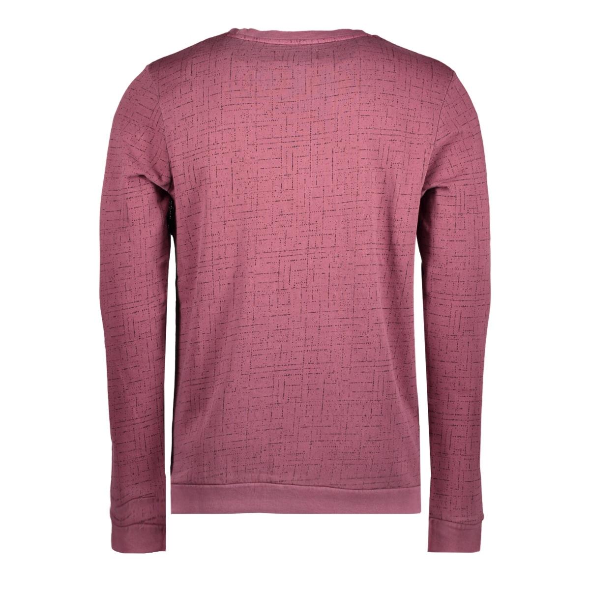 2555211.00.12 tom tailor sweater 4257
