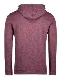 2555117.00.12 tom tailor sweater 4257
