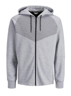 Jack & Jones Vest JCODONDE SWEAT ZIP HOOD EASTER 12135492 Light Grey Melange