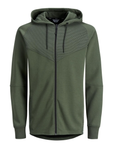 Jack & Jones Vest JCODONDE SWEAT ZIP HOOD EASTER 12135492 Thyme