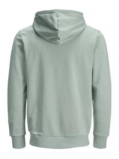 jjeholmen sweat zip hood noos 12136884 jack & jones vest lily pad/ reg fit